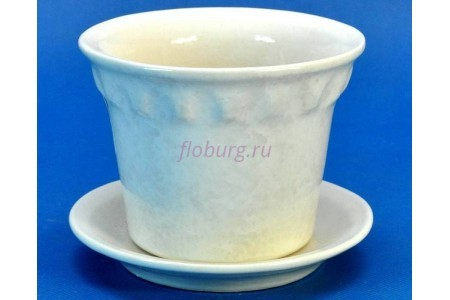 Горшок для цветов керамический с поддоном Кактус бол. белый 0,3л