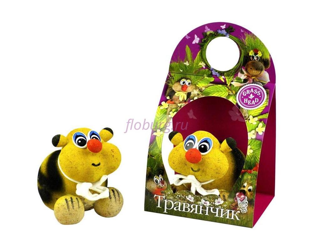 Травянчик «Пчела» (фото,инструкция,как ухаживать)